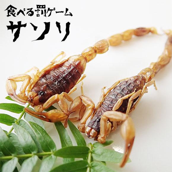 罰ゲーム食べる昆虫 サソリ(アーマーテイルスコーピオン)