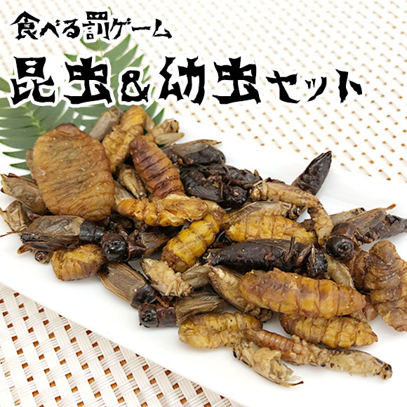 罰ゲーム食べる昆虫 昆虫&幼虫セット(ミックスバグズ)
