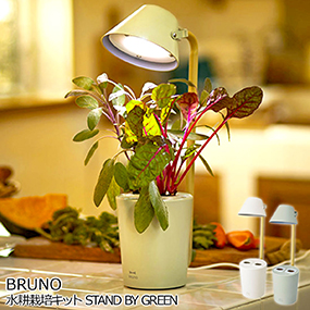 BRUNO水耕栽培キット STAND BY GREEN【...