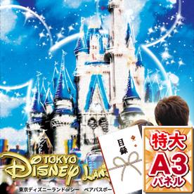 東京ディズニーランドorシー ペアパスポートチケット【目録・A3パネル付き】